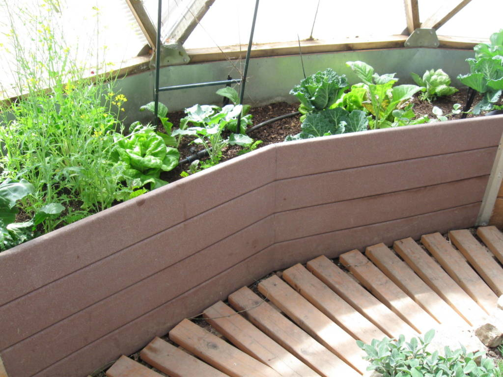recycled plastic lumber perimeter raised beds in geodesic dome greenhouse