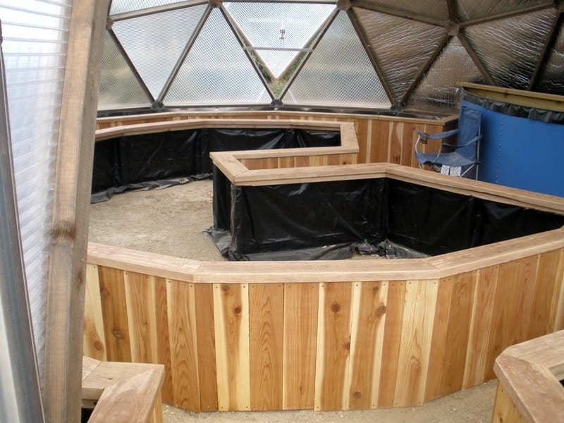 Redwood Raised Beds in a geodesic dome Greenhouse