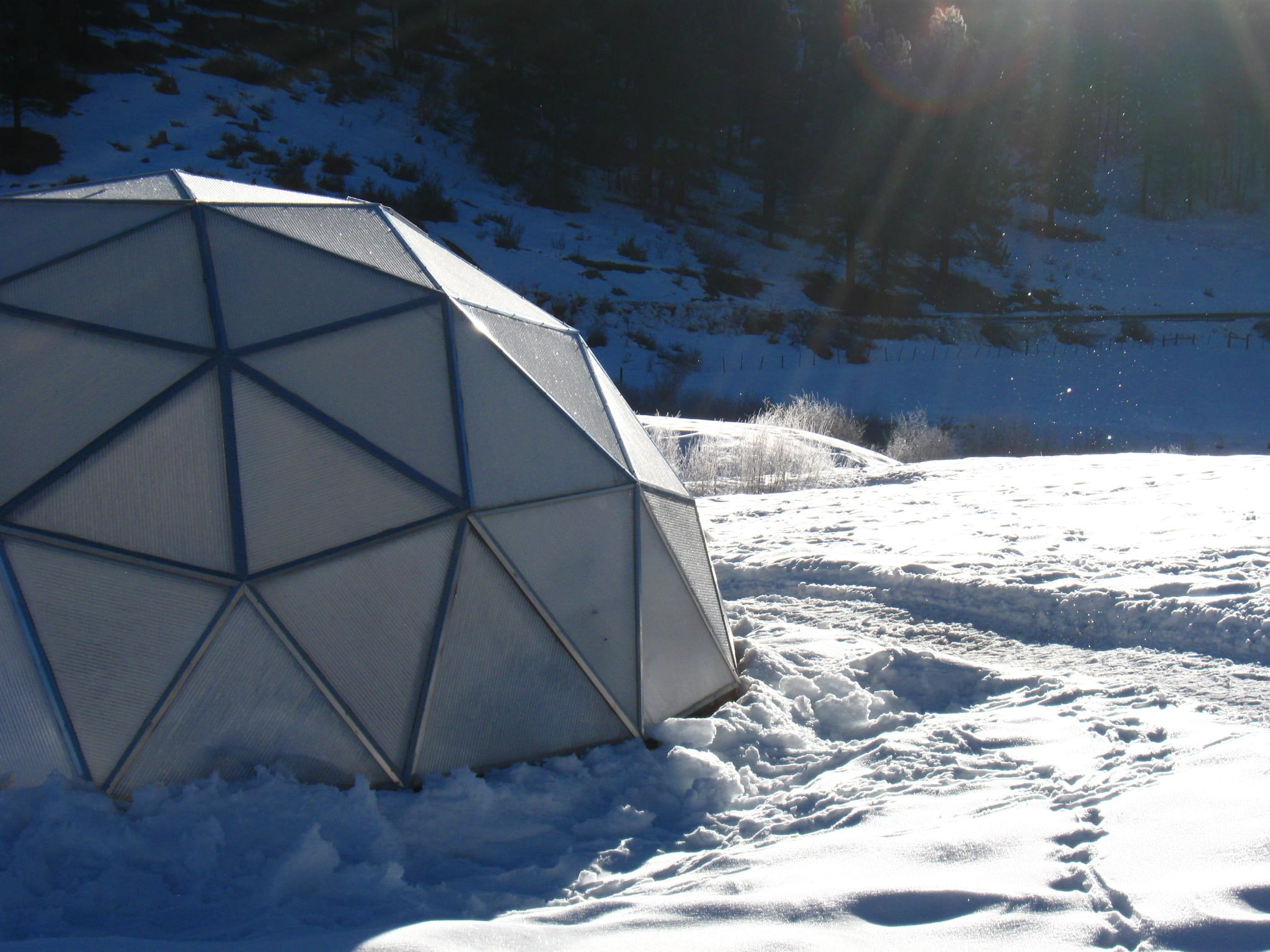 Growing Dome in snow