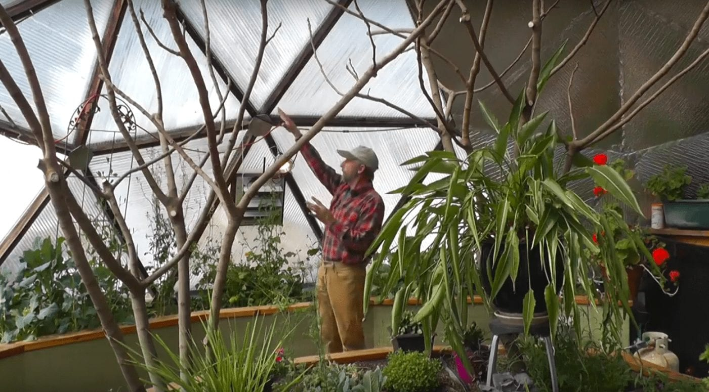 The geodesic shape provide efficient solar heating in the greenhouse