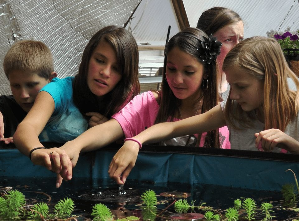 School Kids learning in a Growing Dome Greenhouse above ground pond
