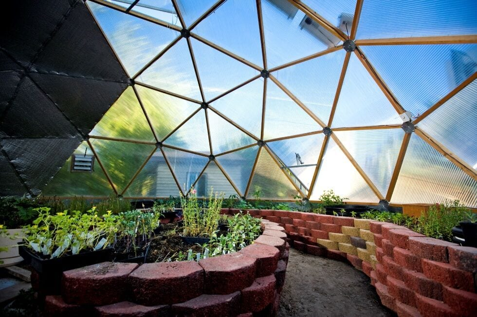 pavestone raised beds in Growing Dome greenhouse