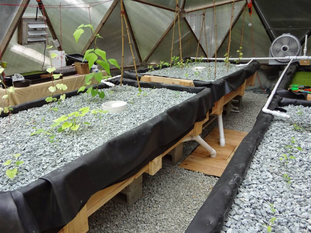 Raised Aquaponic Beds in Growing Dome Greenhouse