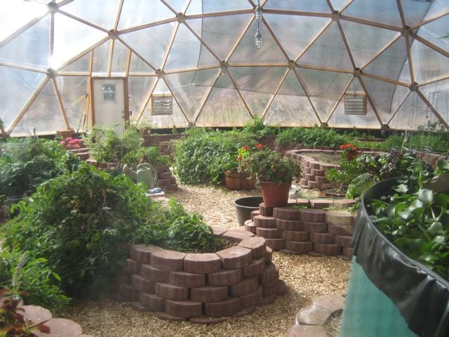 Pavestone planting beds in Growing Dome Greenhouse