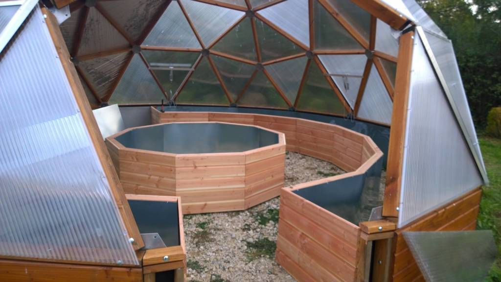 Redwood perimiter and center raised beds in geodesic dome greenhouse