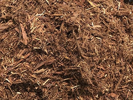 Roly Poly bugs love living and multiplying in mulch