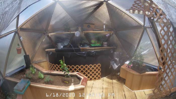 webcam monitoring automated greenhouse