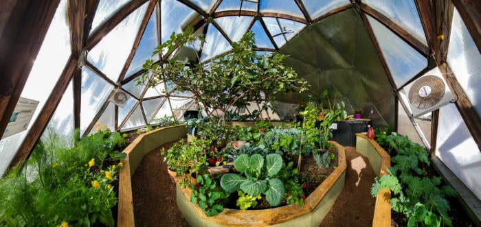 greenhouse ventilation and air movement